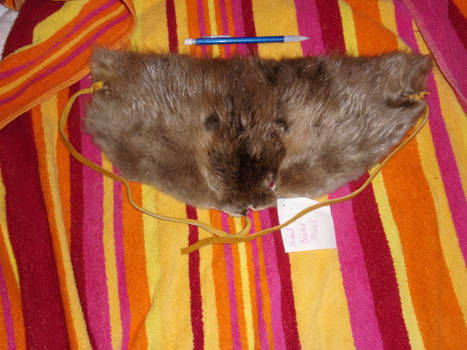 Shaped Beaver Mask