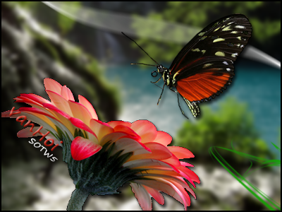 Butterfly by vanHoi91