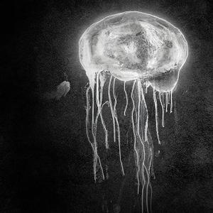 Big ass jellyfish