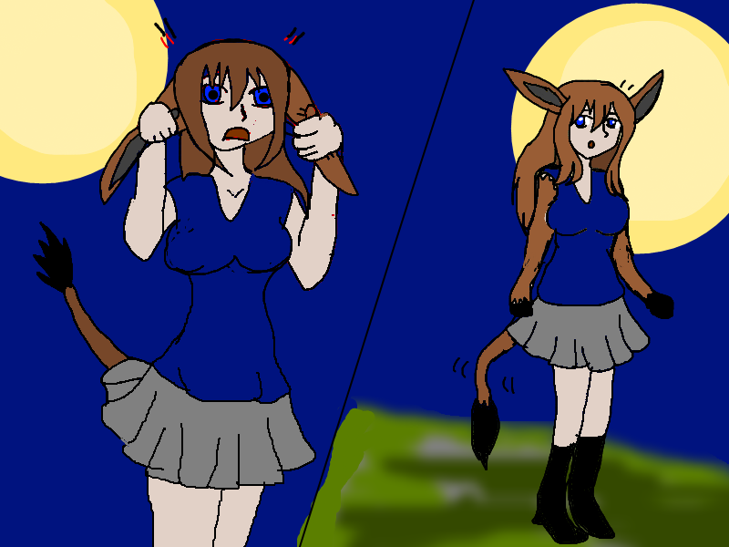Weredonkey Transformation