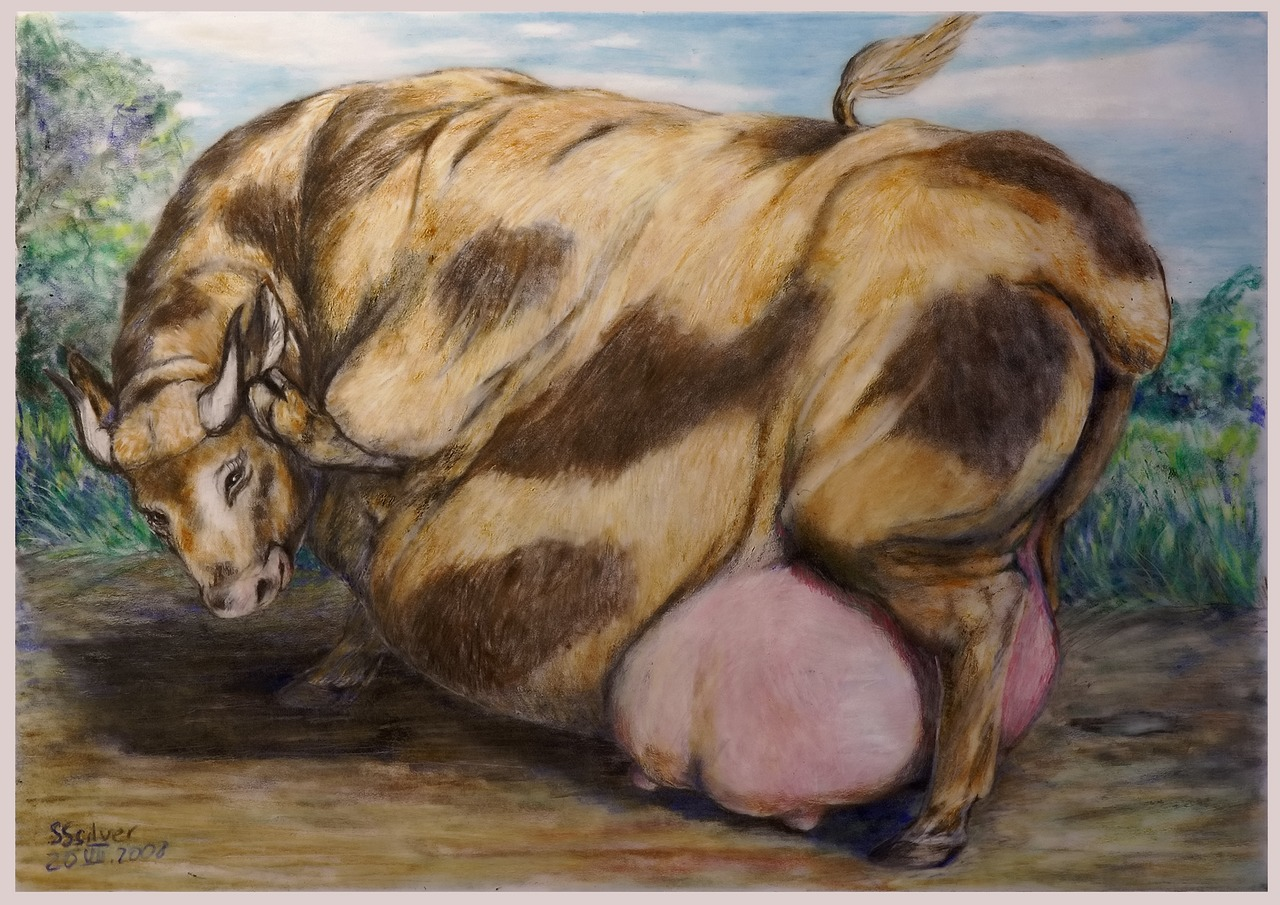 Fat Cow 2 2008 By Sssilver C On Deviantart