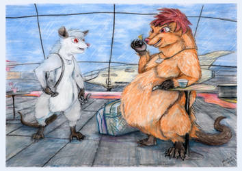 Opossum brothers by SSsilver-c