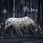 Pisen horse avatar for HEE
