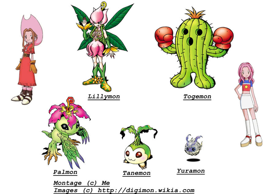 Digimon lillymon evolution