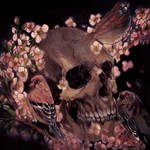 skull sakura