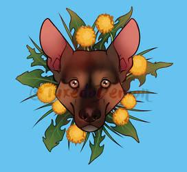 Dandelion Dog.