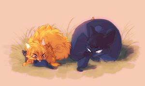 Kagehina kittens