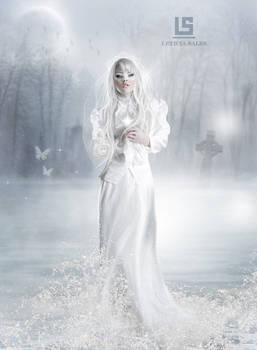 The Bride Frozen