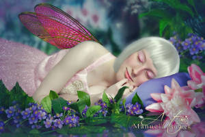 Fairy 3 by manuelabusack
