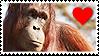 Stamp- Orangutan 1 by IsabellaPrice