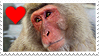 Stamp- Japanese Macaque 1 by IsabellaPrice