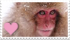 Stamp- Japanese Macaque 2 by IsabellaPrice