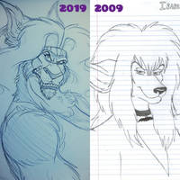 Belle Decade Improvement