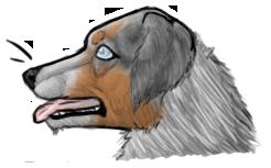 COMMISH: Dog Bust by JaziSnake