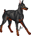 Doberman Pinscher by JaziSnake