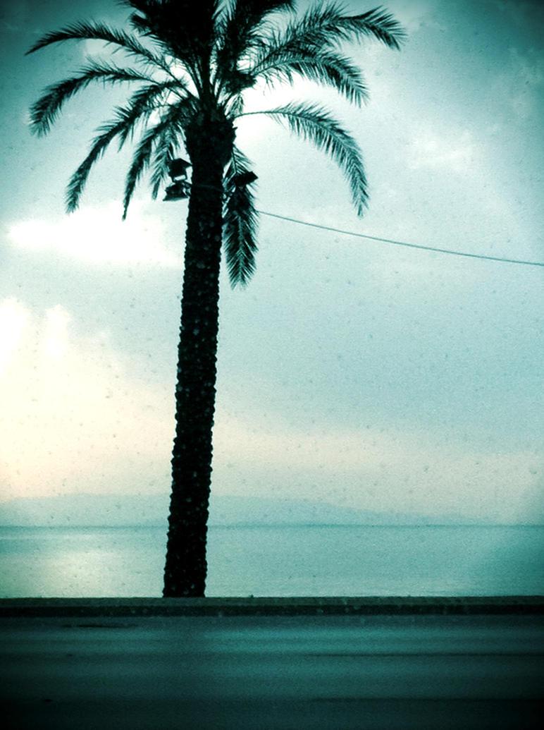 Grey Skies by dperera94