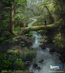 Jungle Pass