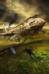 20 Year Plane Wreck
