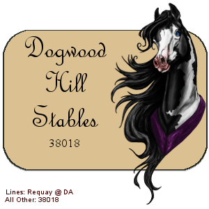 Dogwood Hill Stables avatar by dixiedarlin