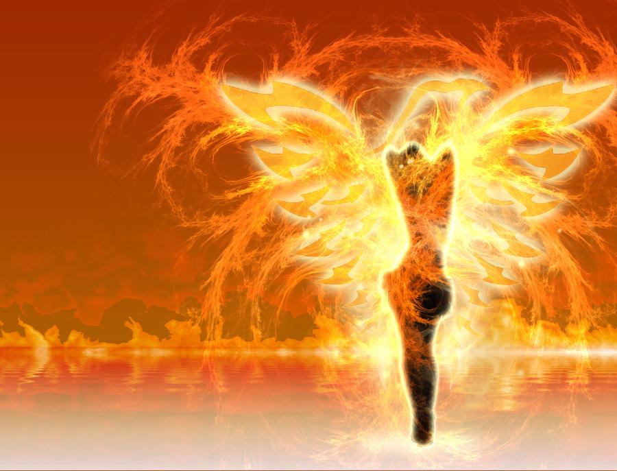http://fc07.deviantart.net/fs70/i/2012/266/a/3/phoenix_by_siphen0-d5fp05x.jpg
