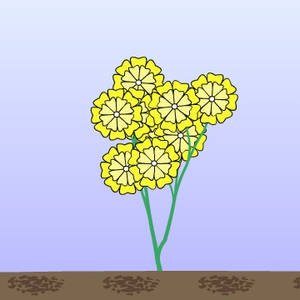 Flower Made With Seed