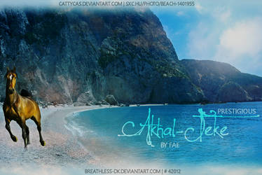 Akhal-Teke by SatinWings