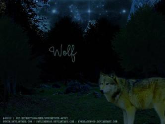 Wolf by SatinWings