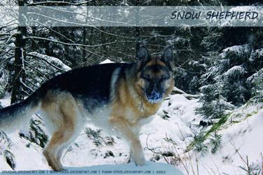 Snow Shepherd by SatinWings