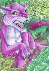 ACEO - Angry cat