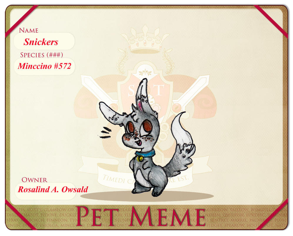 Mortiel Pet Meme- Snickers by Whitewing16