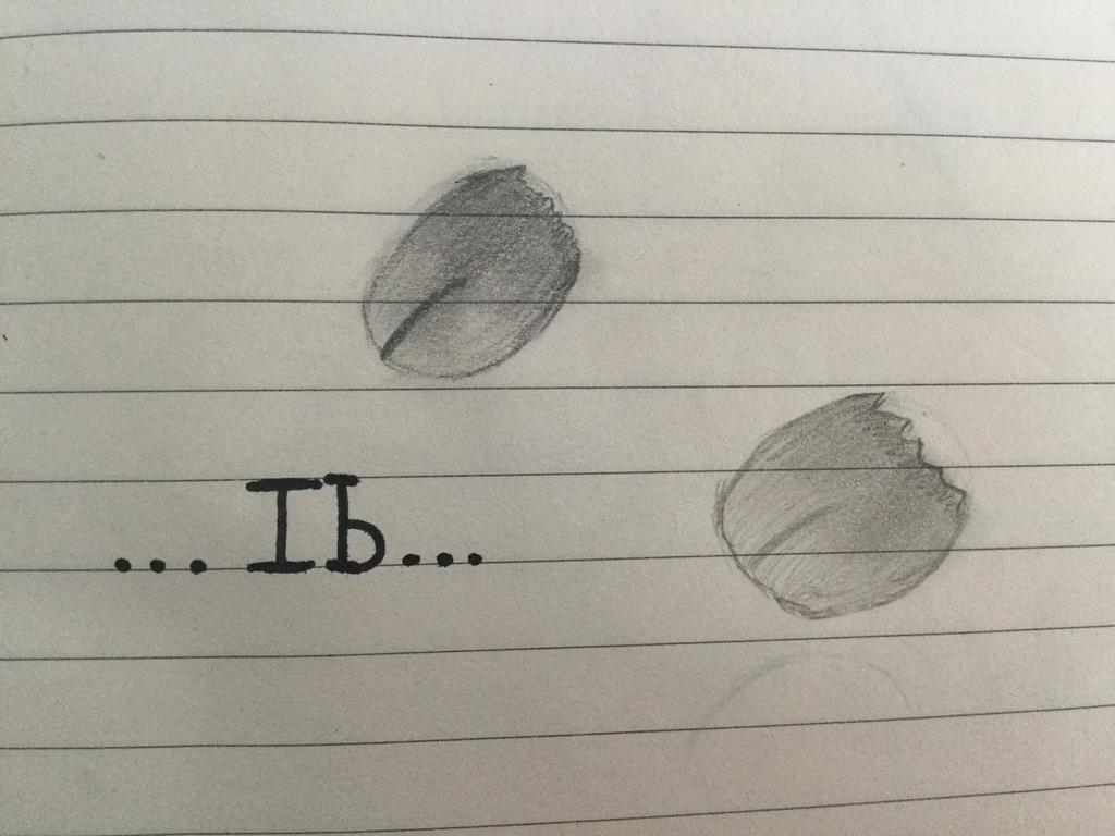 Ib by shadowRWBYsonic