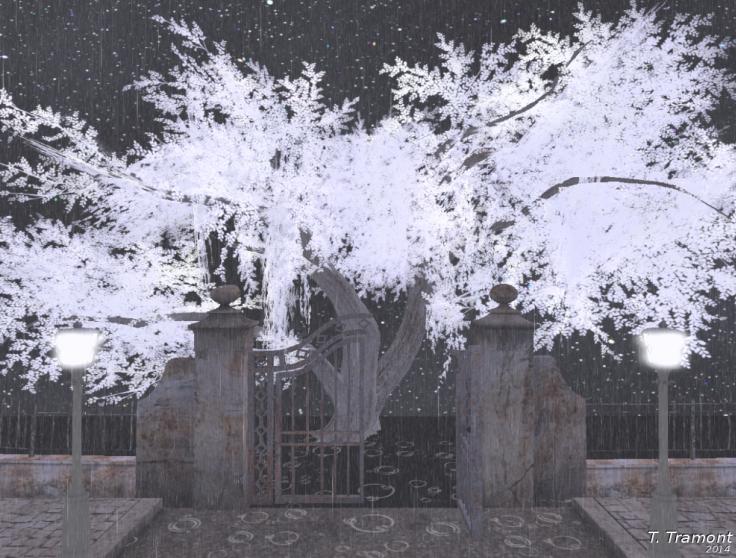 Eerie tree by TalieTramontane