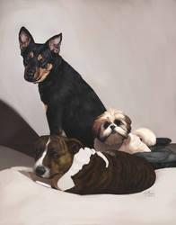 Dog commission 2