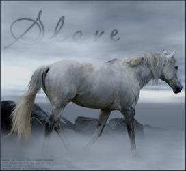 Misty Horse by lacrymosafreak
