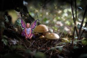 faerie girl vII