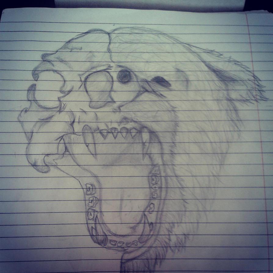 Bear and skull by Letoraa