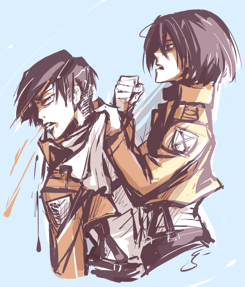 Levi/Mikasa by Kanda3egle on DeviantArt