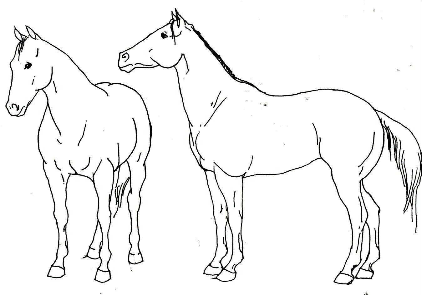 118 with Quarter Horse 28874413 on Bilder Berufe Vorlage also Verliefde Vogels together with Kleeblatt Vorlagen Glucksbringer 481 in addition Quarter Horse 28874413 likewise 40111.
