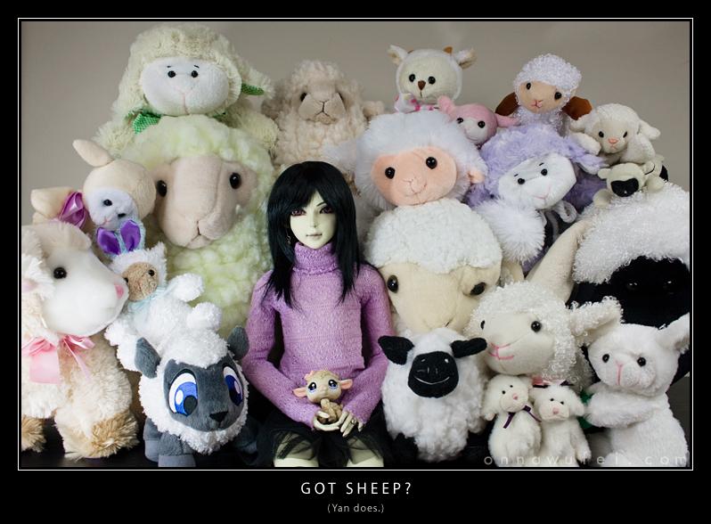 Got Sheep? by onnawufei