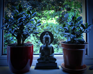 Buddha Of The Window by deepblank