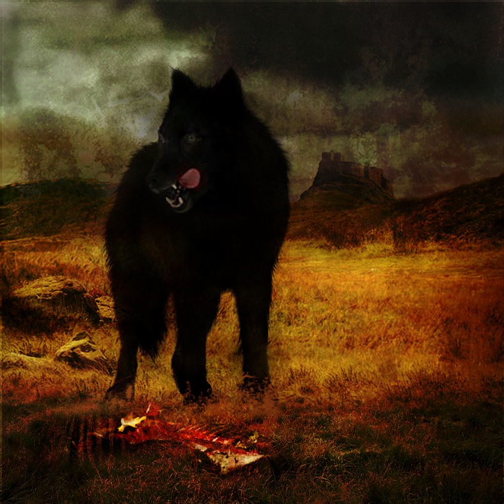 an analysis of the hound of baskervilles The hound of the baskervilles merges two popular genres, the detective story   the moors surrounding baskerville hall are subjected to a cool, logical analysis.