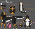 Acidente Reference Sheet