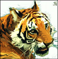 Tigerface by Jedrej