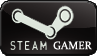 Steam Gamer