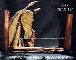 laughing mule 'NEW FENCE'