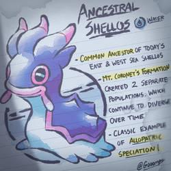 Ancestral Shellos