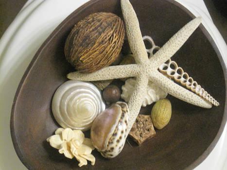 Bowl of Seashells