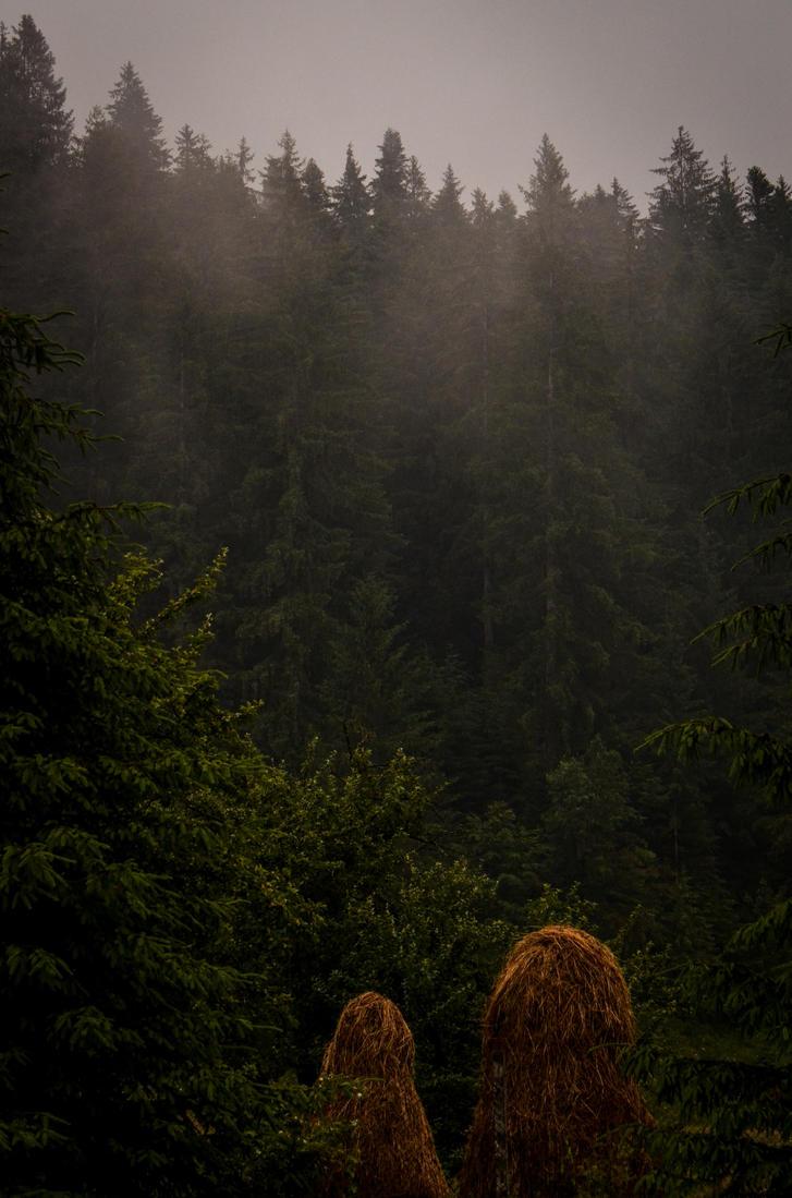 Mist by LunaGothix