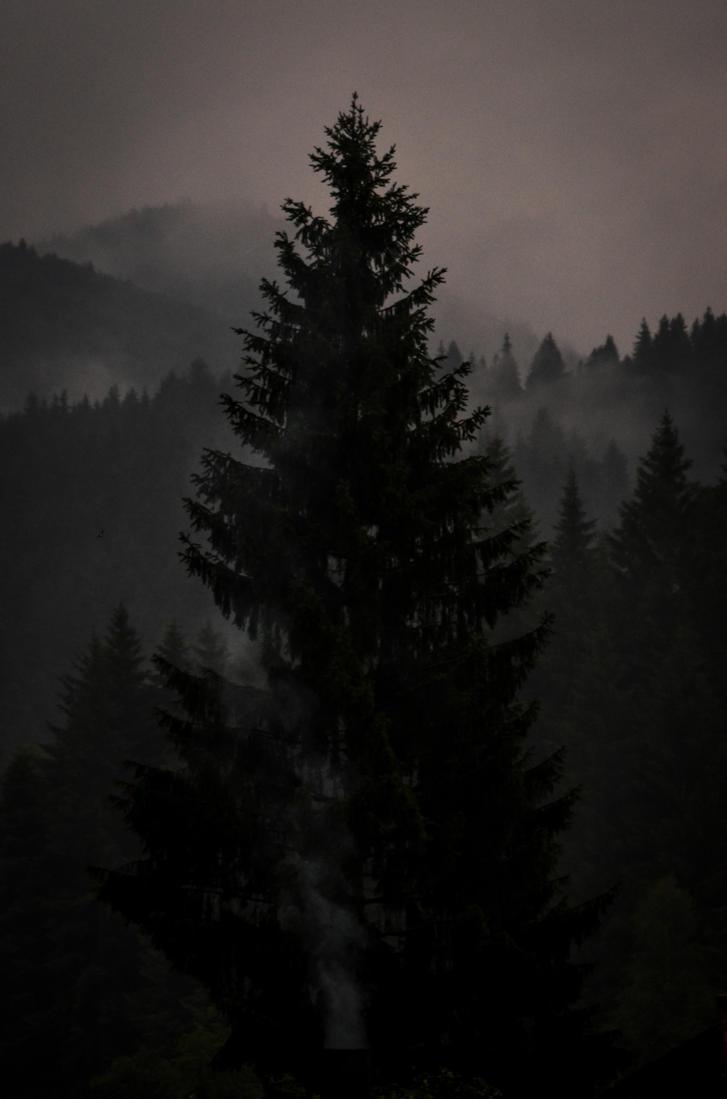 Dark by LunaGothix
