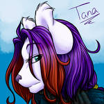 Head Profile - Tanaquil-winter